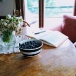 Write Fresh retreat_Yulia